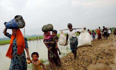 UK MPs want intervention in Rohingya genocide case