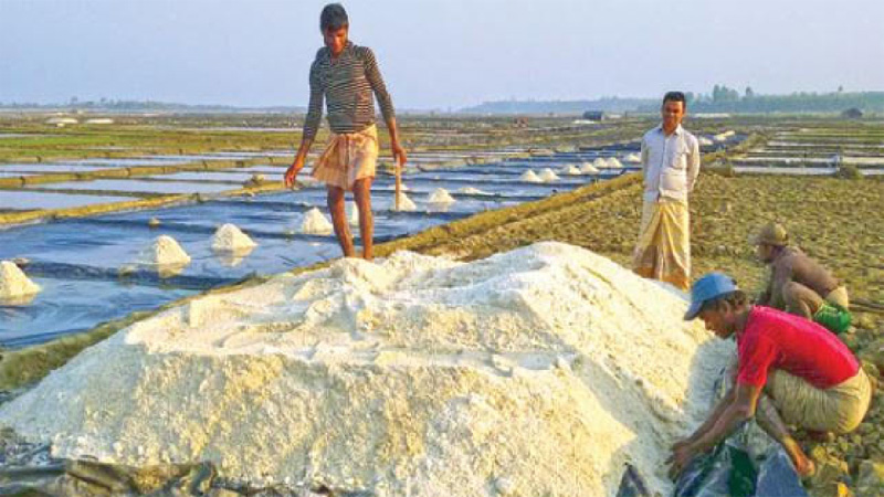 No shortage of salt for preserving rawhide: BSCIC